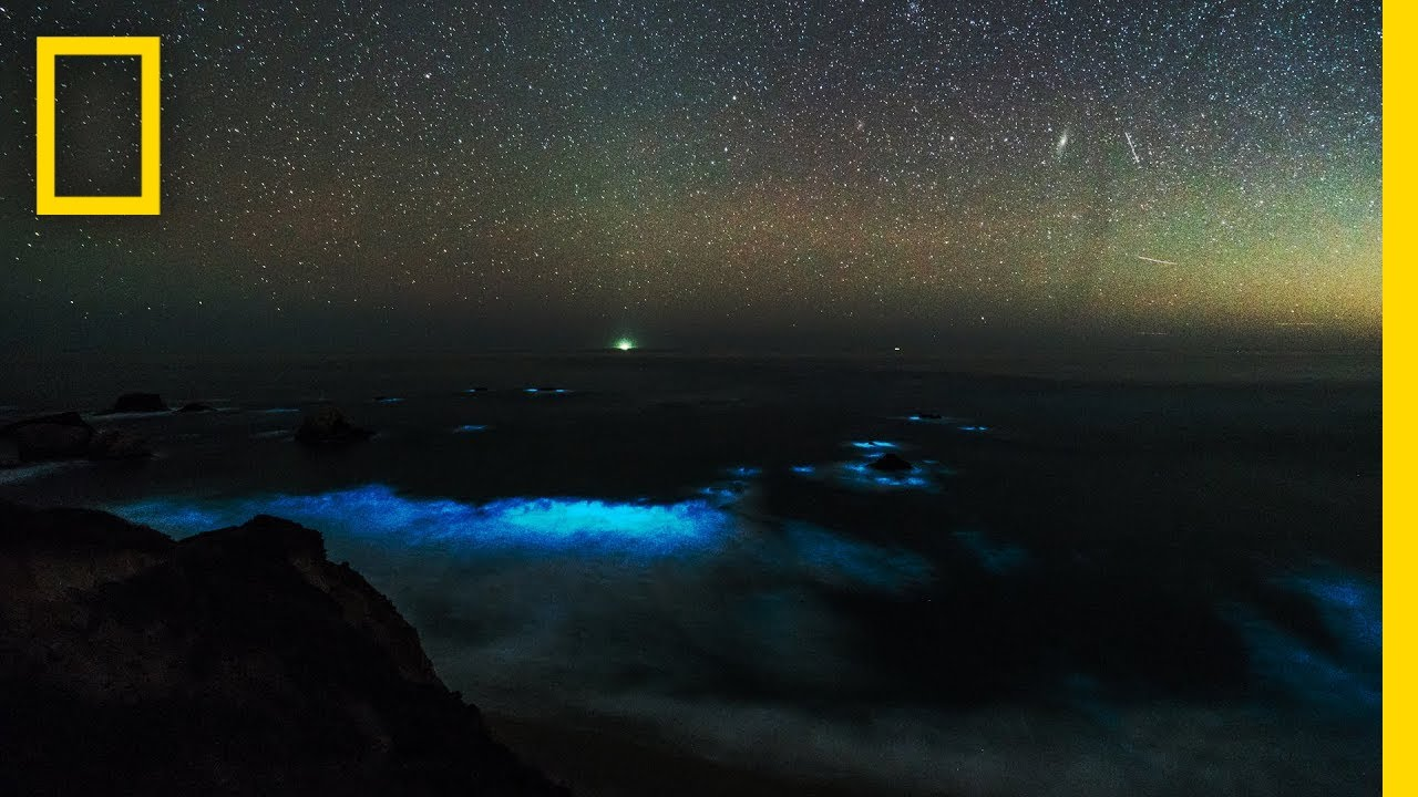 See a Glowing Plankton Bloom in California's Big Sur | National Geographic thumbnail