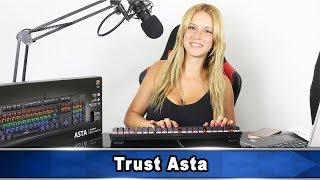 Trust Asta review