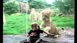Животные приколы. Зоопарк Европы. Look smile Посмотри улыбнись.!!!