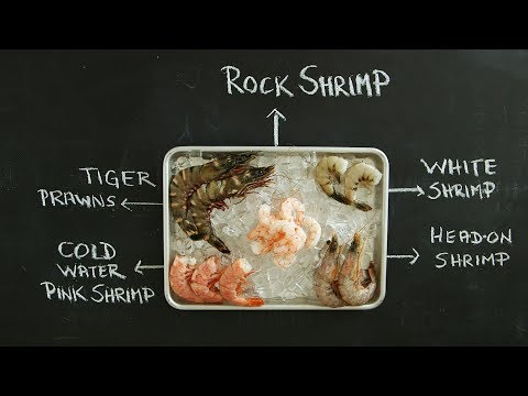 Essential Tips for Identifying and Buying Shrimp – Kitchen Conundrums with Thomas Joseph
