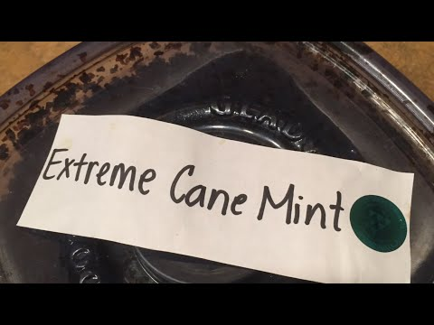 Tangiers Tobacco: Extreme Cane Mint Christmas 2015