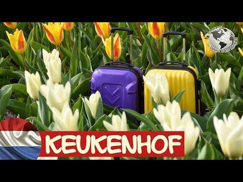 Keukenhof, el jardín de Europa. Holanda 2017
