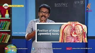 Standard 9 | Biology | Class – 14