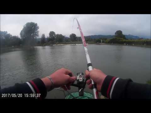 La pesca nel video di regione di Voronezh