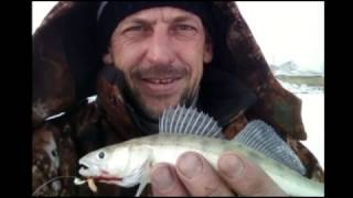 Рыбалка в курган фион форум