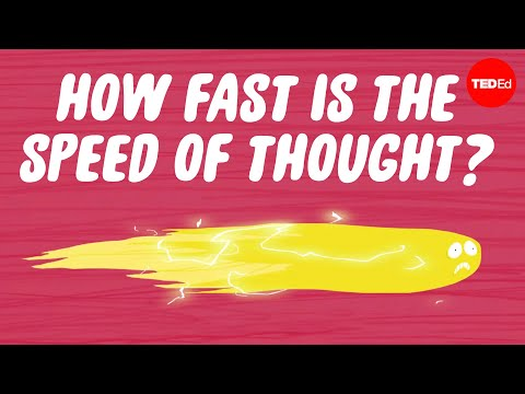 Can You Measure the Speed of Thought?
