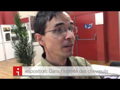 Vidéo de Geoffroy Delorme