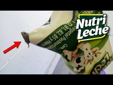 , title : 'Los SECRETOS De NUTRILECHE | ¿NO Es Leche Realmente?'
