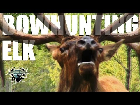 Headhunter Chronicles – Bow hunting giant California elk