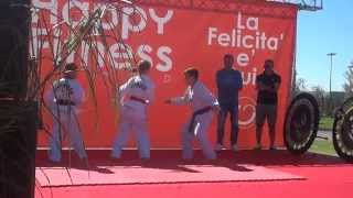 preview picture of video 'Taekwondo Happy Fitness World Open Day Salaria Sport Village Roma'