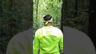 Agumbe rain forest
