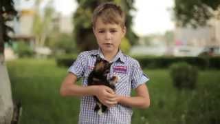 Фонд«Рука помощи бездомным животным» представляет благотворительный спектакль «Мёртвые души».