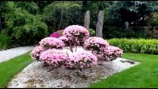 Winters japanischer Garten