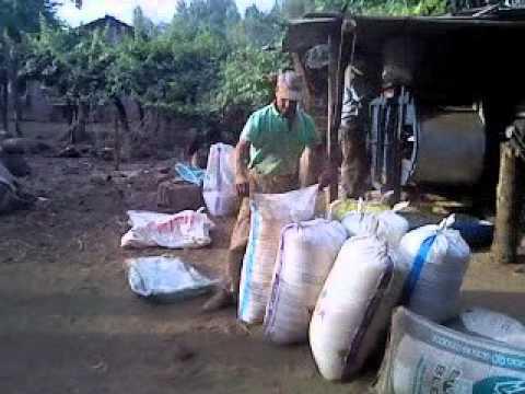 maquina limpiadora de trigo antigua marca boby