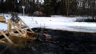 Серебряный бор бездонное озеро рыбалка