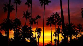 Hotel california lyrics video