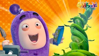 Oddbods | NEW | JEFF & THE BEANSTALK | Full EPISODE COMPILATION | Funny Cartoons For Kids