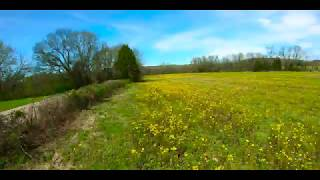 Early Spring - FPV Drone