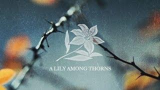 """A Lily Among Thorns"" with Jentezen Franklin"