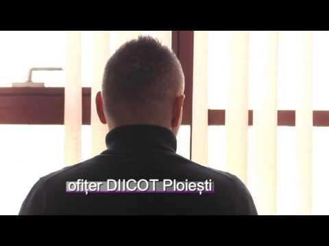 Diseară la știri VP TV: Captură de cannabis la Ploiești
