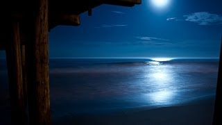 Beethoven Moonlight Sonata with Relaxing Nature Sounds [ Sleep Music ]