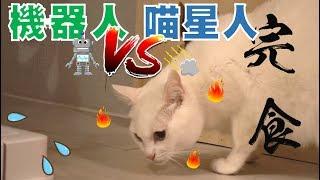 【豆漿 - SoybeanMilk】正面決鬥!! 喵星人大戰機器人