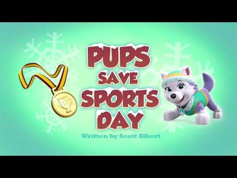 🎬Совместное видео щенки спасают день спорта и щенки спасают Робо-динозавра 🎬