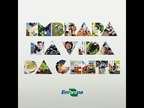 Vídeo institucional da Embrapa Amazônia Oriental