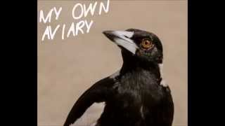 Bear (The Antlers cover) - My Own Aviary