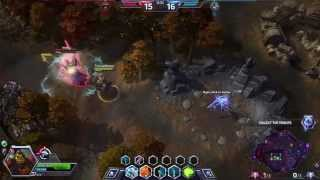 ShedDwellers First Video Heroes Of The Storm Gameplay