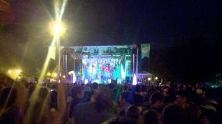 Animal Collective - Brother Sport (Pitchfork Music Festival 2011)