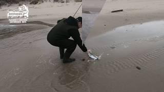 Рыбалка на балтийском море калининградская область