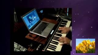 RADIOTAZA LIVE - Palestra e Música - Eu Te Amo, Meu Brasil - AO VIVO