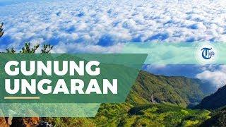 Gunung Ungaran - Gunung Tiga Puncak di Semarang