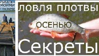 Про рыбалку осенью на плотву 20019