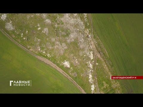 В Орловской области земельный участок сельхозназначения завалили бытовыми отходами