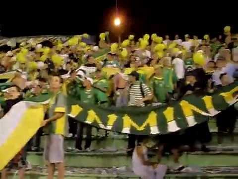 """""""AVS La Qomuna 8"""" Barra: Artillería Verde Sur • Club: Deportes Quindío"""