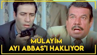 Korkusuz Korkak - Bombacı Mülayim Ayı Abbas'ı Haklıyor!