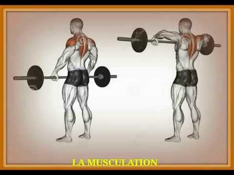 La médecine nationale à la douleur dans les muscles