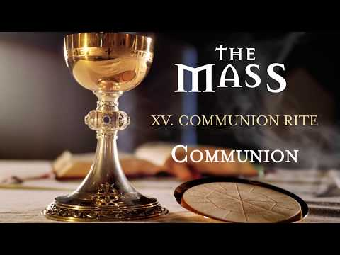 The Mass: 15 – Communion Rite – Communion