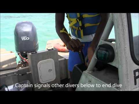 Video UWI Jamaica Lionfish First Aid