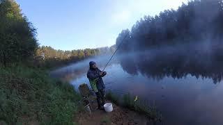 Тверская область рыбалка на реке молога