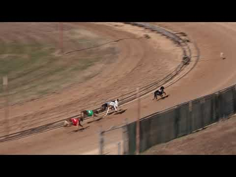 Race 38