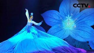 2013年我要上春晚 舞蹈《桔梗谣》 吉林代表团 | CCTV春晚