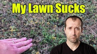 Restore Bermuda Lawn