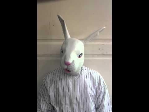 Io sono un coniglio/ io non sono un coniglio (2011).