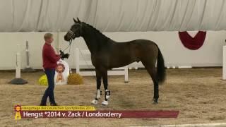 video of Zeffirelli