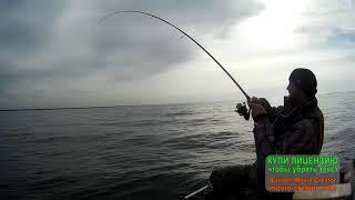 Обское море рыбалка рыба