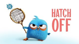 Angry Birds Blues | Hatch Off   S1 Ep5