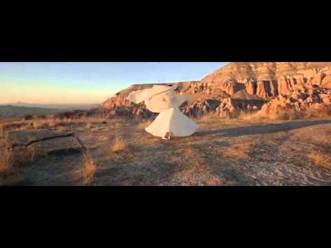 OneDance Trailer